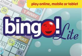 Bingo Lite Game